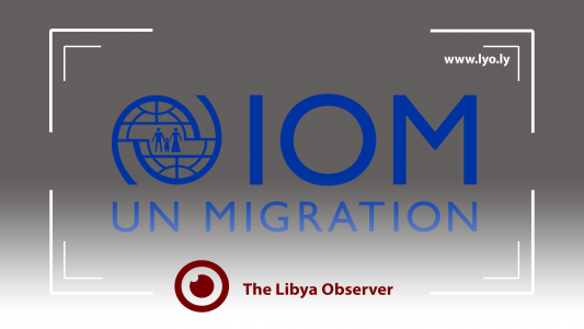 IOM calls on the international community to save illegal immigrants in Libya