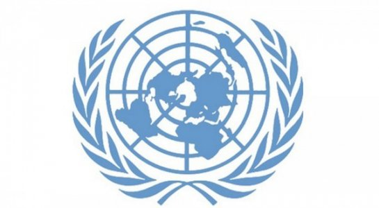 870 families were displaced by Sabha tribal clashes, UN body reports