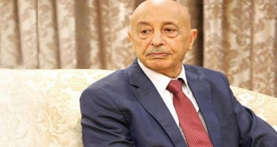 "Parliament Speaker: Egypt to help in ""liberating"" Derna, Turkey supports terrorism in Libya"