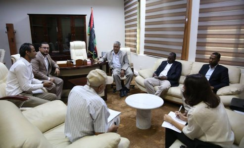 Ministry of IDPs meets with UNDP expert on Tawergha issue
