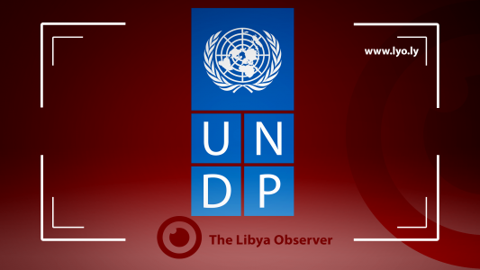 France allocates one million Euro in support of UNDP initiative for IDPs safe return