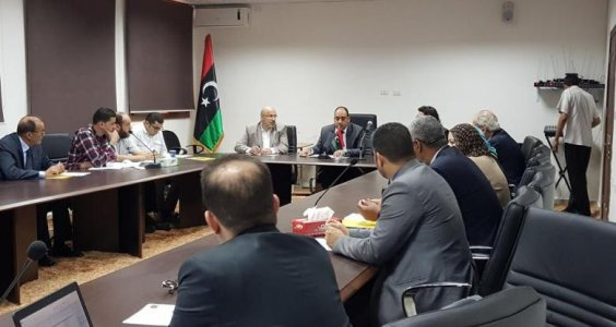 WHO members meet with government health officials to better healthcare in Libya